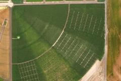 2008-07-14-QAL-SE_crop